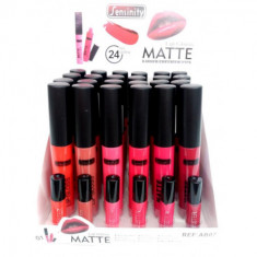 LIPGLOSS MATTE 24H. 6 COLORES (0.75€'¬ UNIDAD) PACK 24  SENSINITY