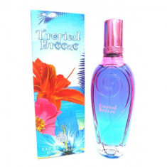 EAU DE PARFUM  TROPICAL BREEZE  POUR FEMME 100ML.  REAL TIME