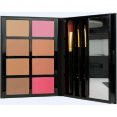 PALETA BLUSH & BRONCER (6.35€'¬ UNIDAD) PACK 6  ICD INSTITUTE